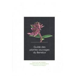 Guide des plantes sauvages du Benelux