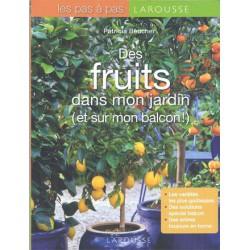 Des fruits dans mon jardin (et sur mon balcon !)