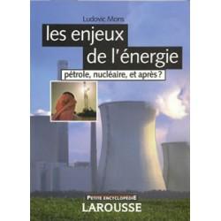 Enjeux de l'énergie (Les)