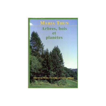 Arbres bois et planètes