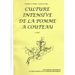 Culture intensive de la pomme à couteau
