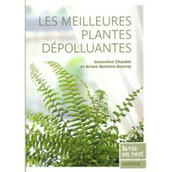 Meilleures plantes dépolluantes (Les)
