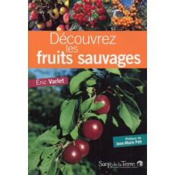 Découvrez les fruits sauvages