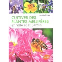 Cultiver des plantes mellifères