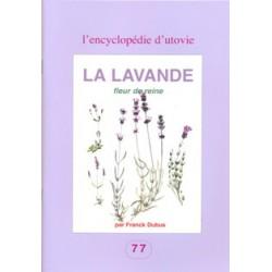 Lavande fleur de reine (La)