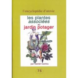 Plantes associées au jardin potager