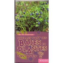 Quelles sont ces baies et plantes sauvages?