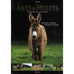 Ânes & mulets