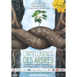Intelligence des arbres (L')