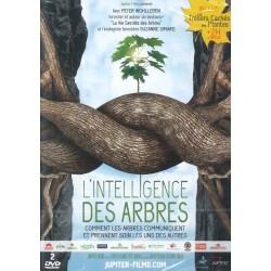 Intelligence des arbres (L')