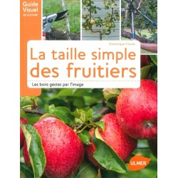 Taille simple des fruitiers