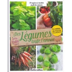 Légumes toute l'année