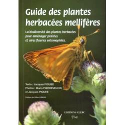 Guide des plantes herbacées mellifères