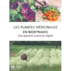 Plantes médicinales en...
