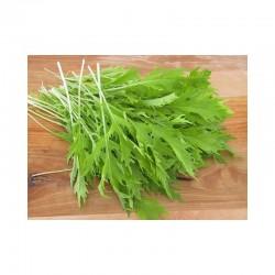 Salade Asiatique Mizuna