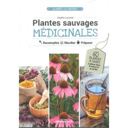 Plantes sauvages...