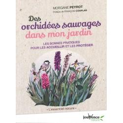 Orchidées sauvages dans mon...