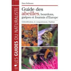 Guide des abeilles bourdons guêpes et fourmis