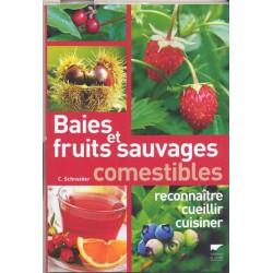 Baies et fruits sauvages comestibles