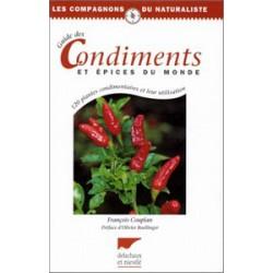 Guide des condiments et épices du monde